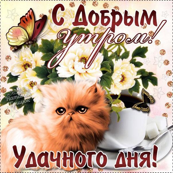 Мерцающие открытки с добрым утром и хорошим днем (19)