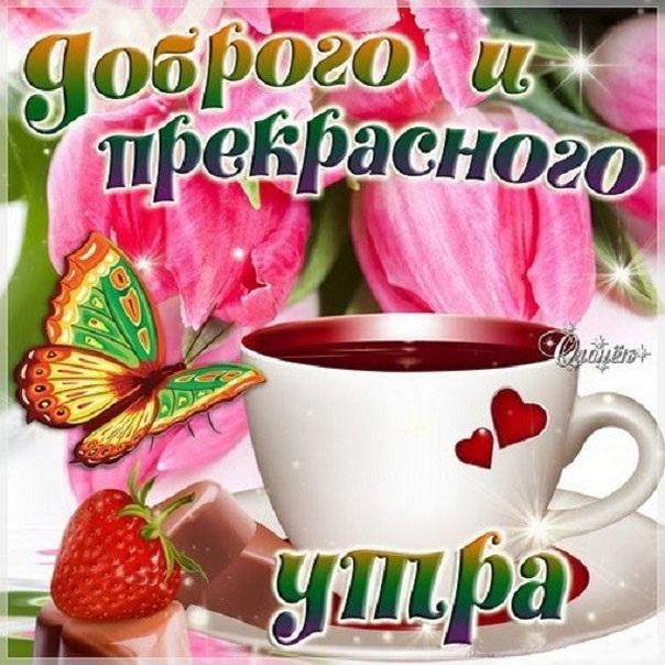 Мерцающие открытки с добрым утром и хорошим днем (5)