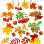 Осенние листья арт картинки