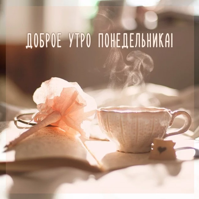 Понедельник с добрым утром картинки (11)