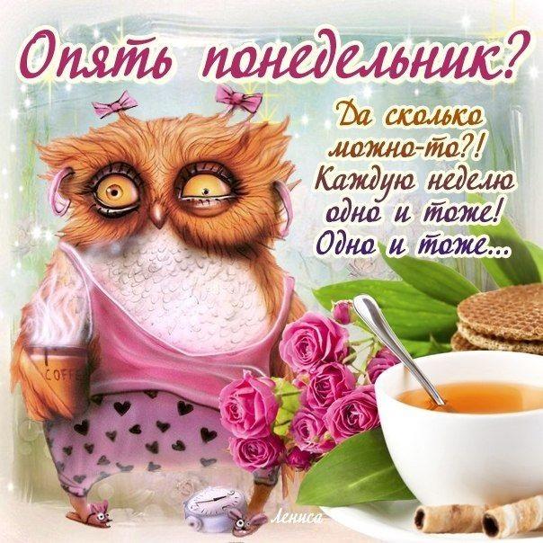 Понедельник с добрым утром картинки (19)