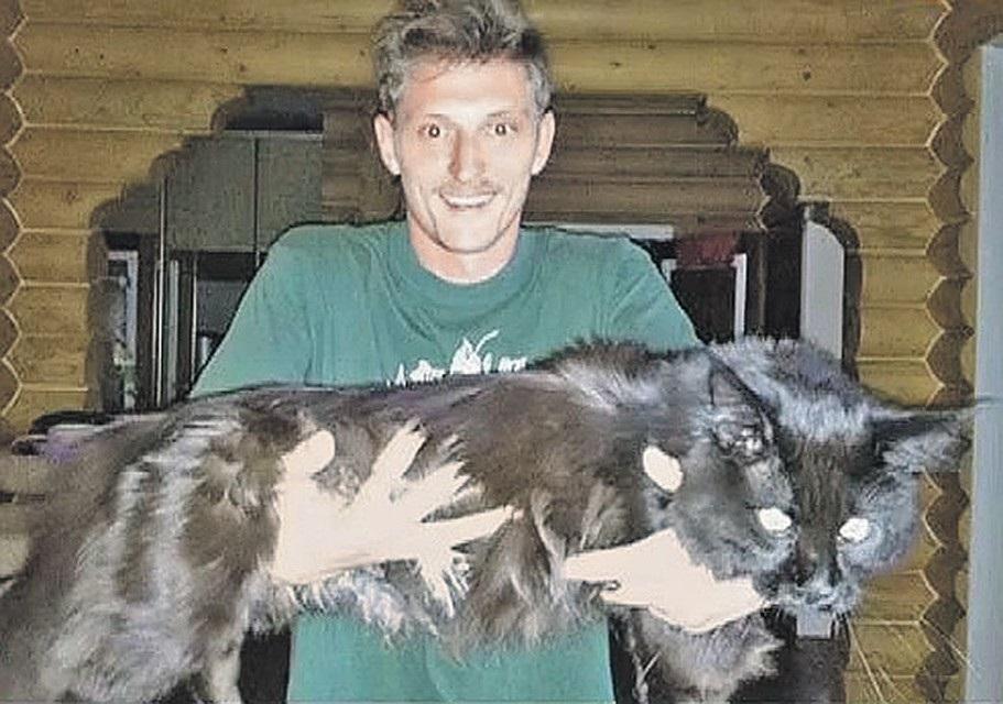 Популярные фото Павла Воли с котом (15)