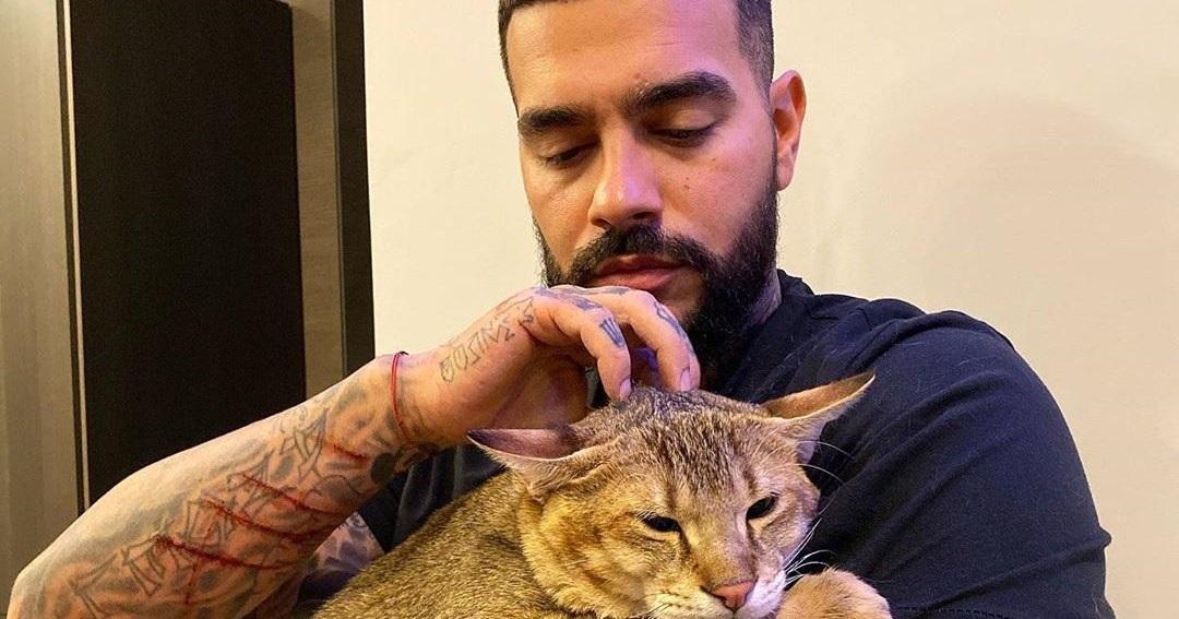 Популярные фото Павла Воли с котом (16)