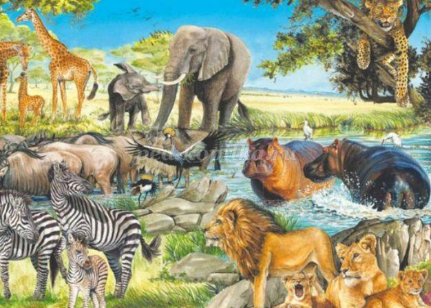 Рисунок для детей африка (17)