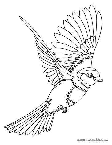 Рисунок птичка для вышивки (12)