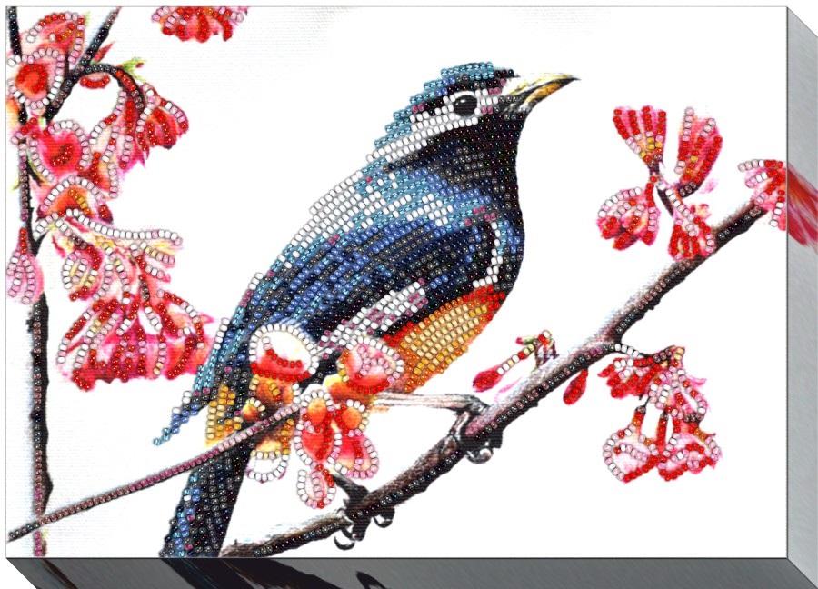 Рисунок птичка для вышивки (17)