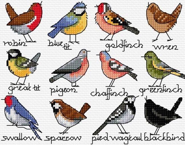 Рисунок птичка для вышивки (21)