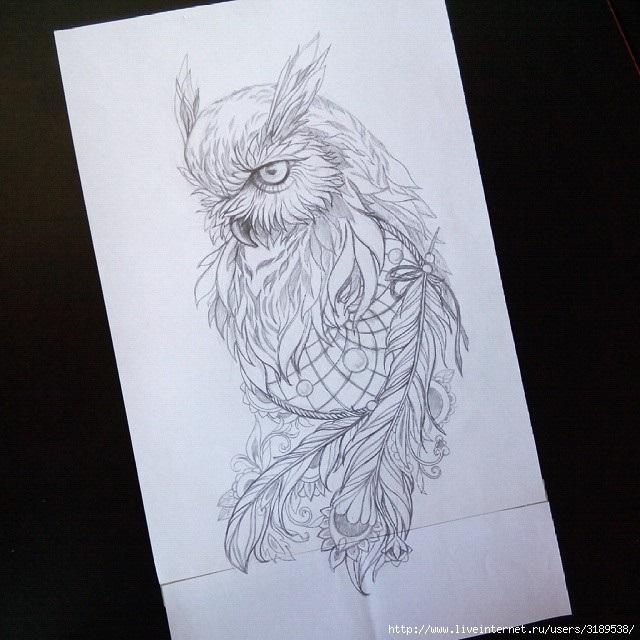 Рисунок совы в графике (10)