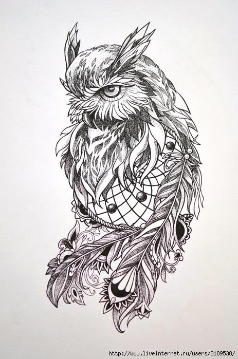 Рисунок совы в графике (11)