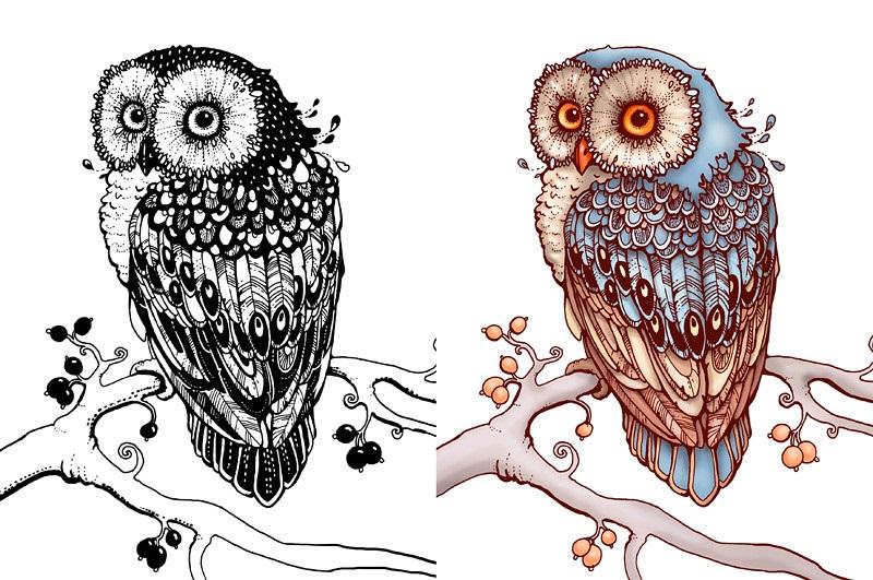 Рисунок совы в графике (7)