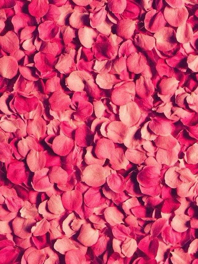 Розовые заставки на айфон (1)