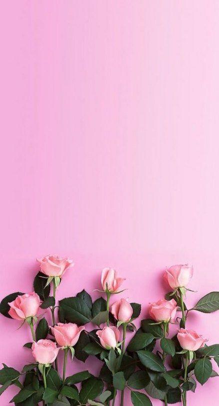 Розовые заставки на айфон (15)