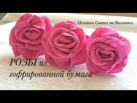 Розы из папиросной бумаги (10)