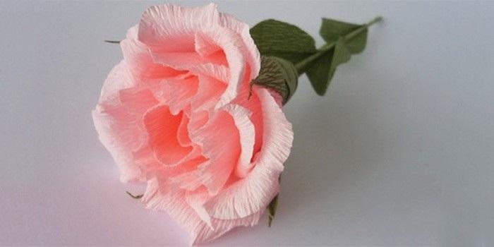 Розы из папиросной бумаги (14)