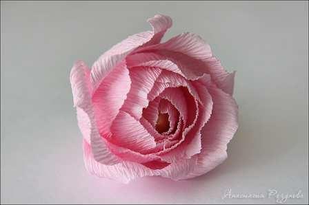 Розы из папиросной бумаги (16)