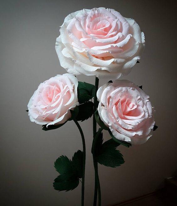 Розы из папиросной бумаги (4)