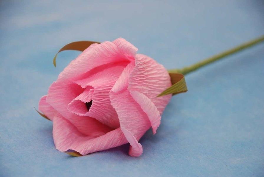 Розы из папиросной бумаги (5)