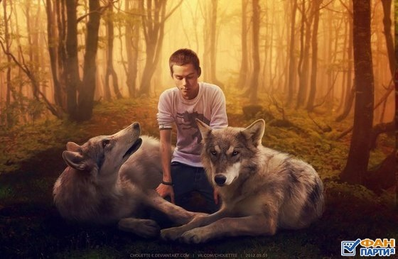 Сериал волчонок арт картинки (2)