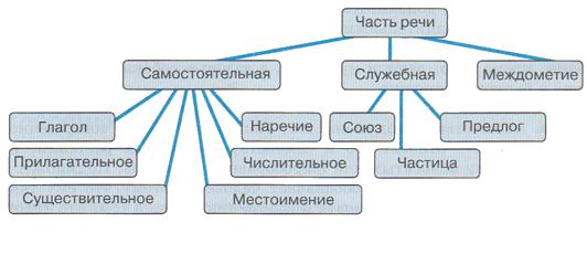 Сколько частей речи в русском языке