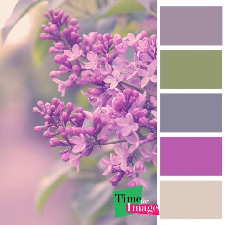 Сочетание цветов картинки (1)