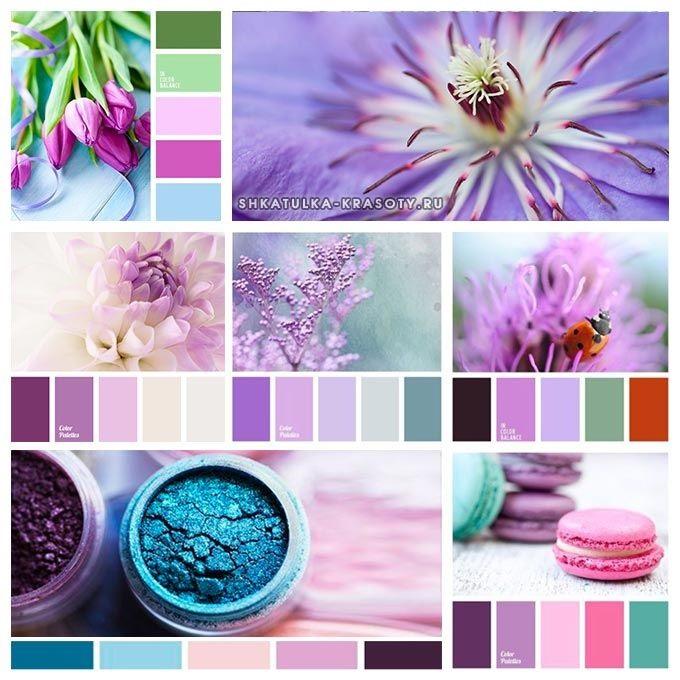 Сочетание цветов картинки (21)