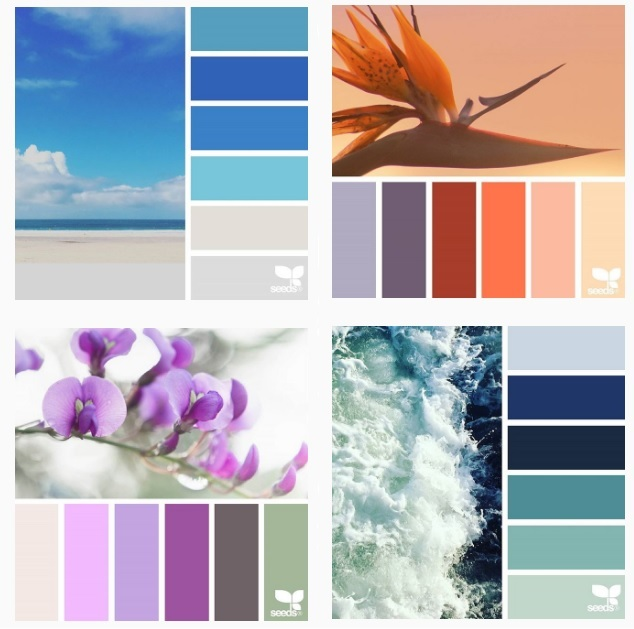 Сочетание цветов картинки (3)