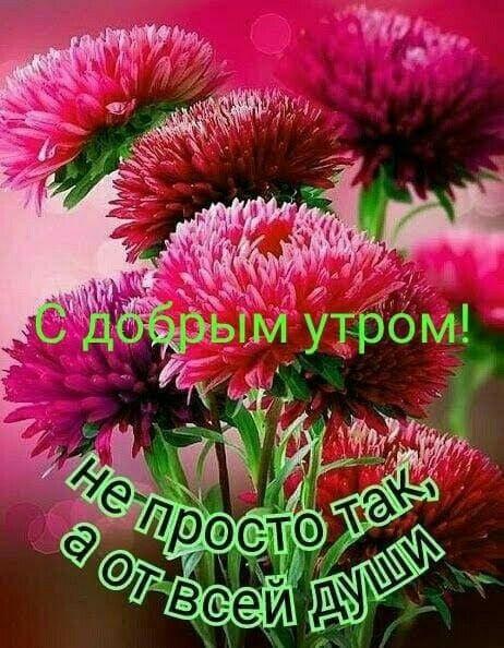 Таня доброе утро (4)