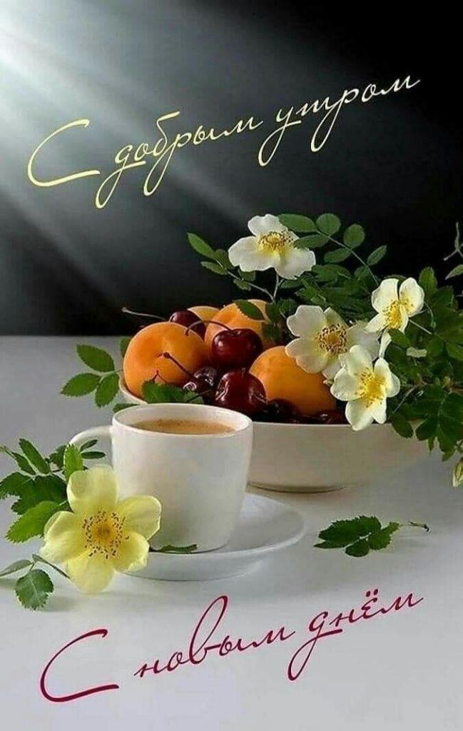 Таня доброе утро (7)