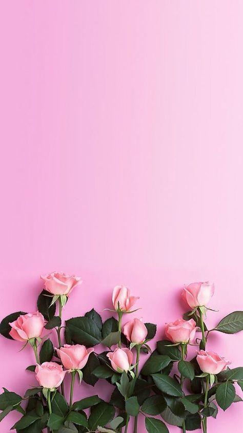 Тумблер фоны цветы - сборка картинок (17)