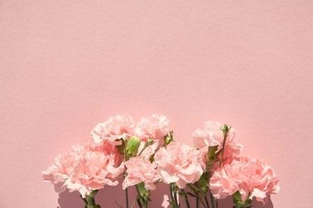 Тумблер фоны цветы - сборка картинок (21)