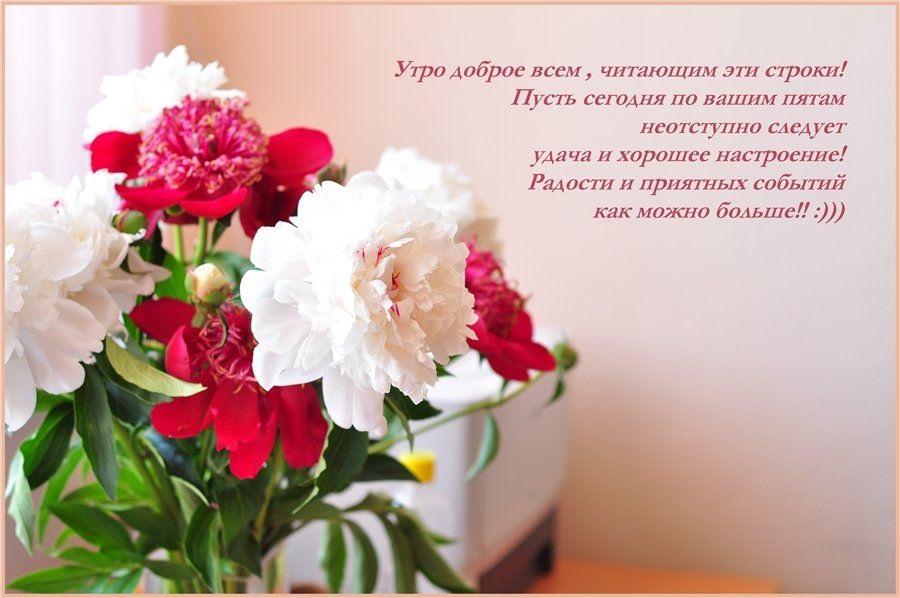 Удачного дня и доброе утро (1)