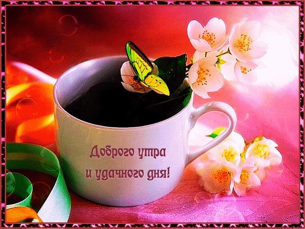 Удачного дня и доброе утро (15)