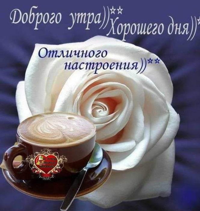 Удачного дня и доброе утро (20)