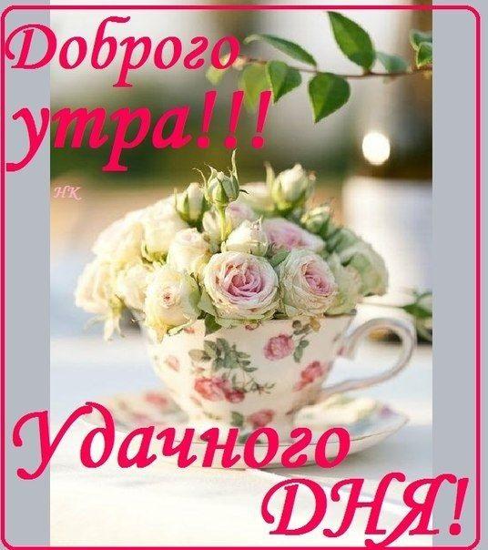 Удачного дня и доброе утро (4)