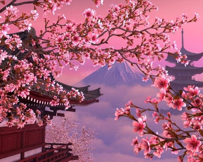 Фотографии природы Япония (12)