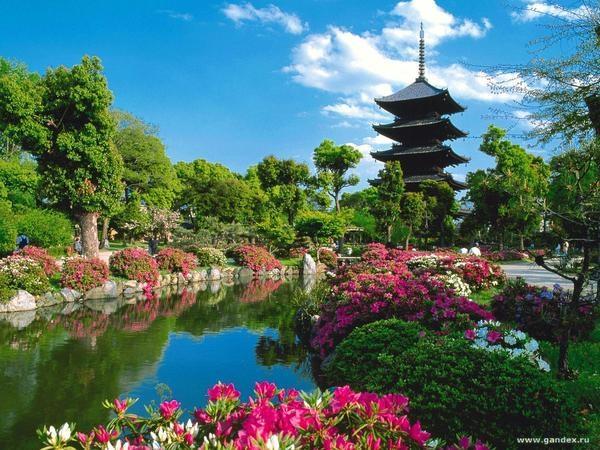 Фотографии природы Япония (3)