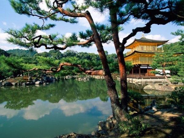 Фотографии природы Япония (4)