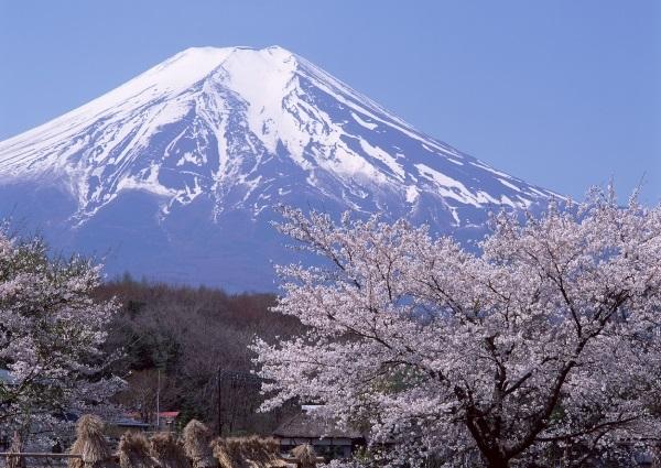 Фотографии природы Япония (5)