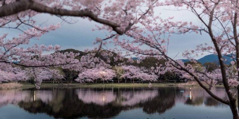 Фотографии природы Япония (8)