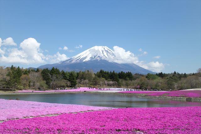 Фотографии природы Япония (9)