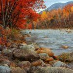 Фотографии природы: осенний лес