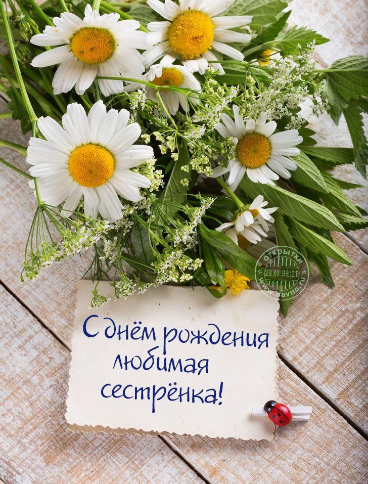 Цветы картинки с днем рождения сестренка