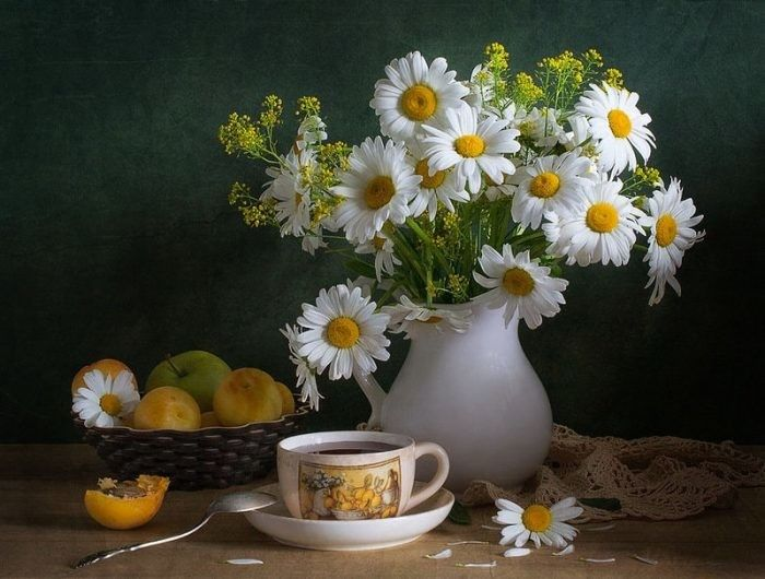 Ромашки с добрым утром (5)