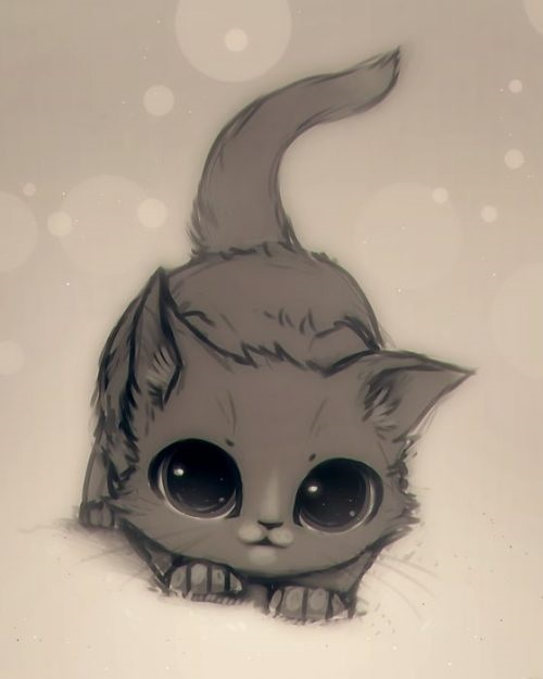 Картинки для срисовки котята милые (1)