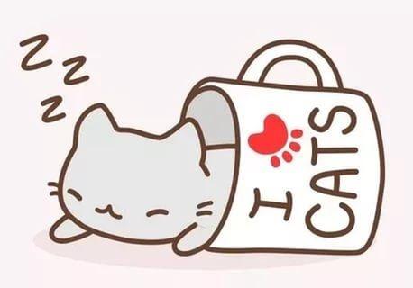 Картинки для срисовки котята милые (6)