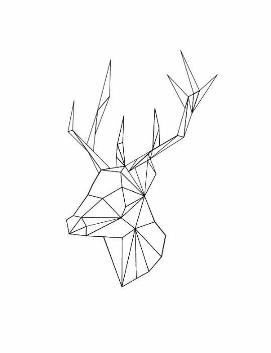 Картинки олень для срисовки (22)