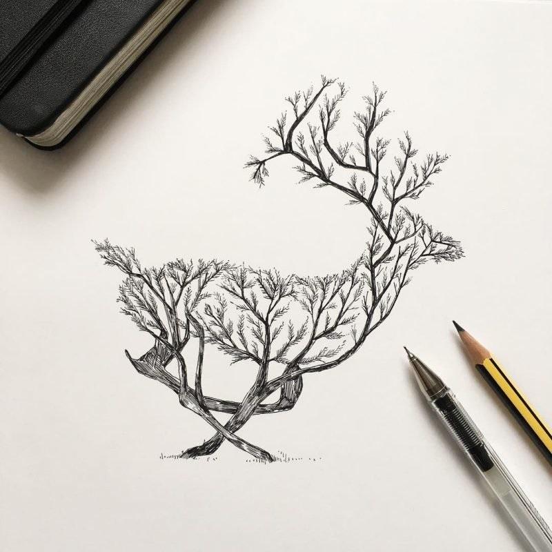 Картинки олень для срисовки (23)