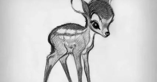 Картинки олень для срисовки (3)