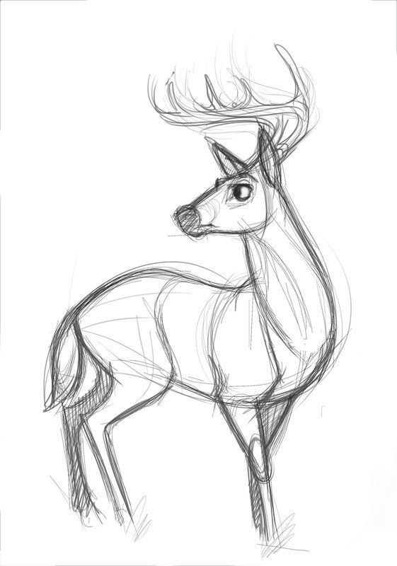 Картинки олень для срисовки (6)