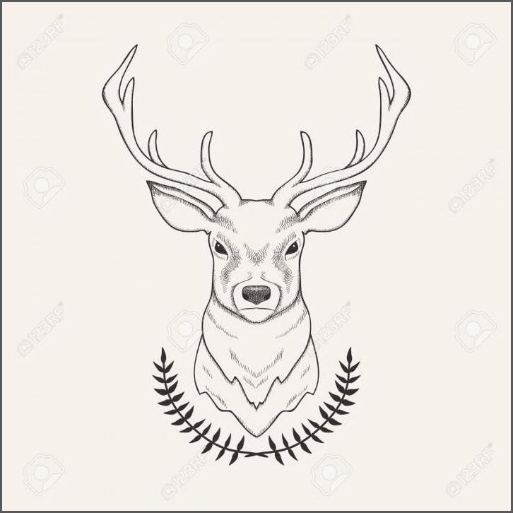 Картинки олень для срисовки (8)
